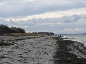 Insel Poel_Schwarzer Busch_Die kleine Fachwerk-Kate (14)