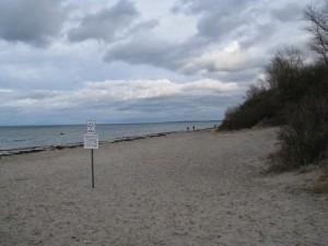 Insel Poel_Schwarzer Busch_Die kleine Fachwerk-Kate (3)