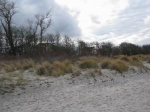 Insel Poel_Schwarzer Busch_Die kleine Fachwerk-Kate (5)